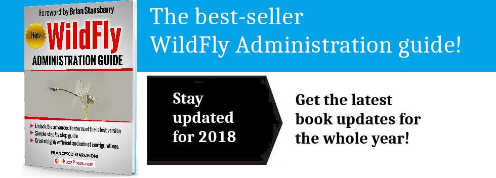 book-wildfly1.png