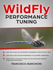 jboss wildfly performance tuning book